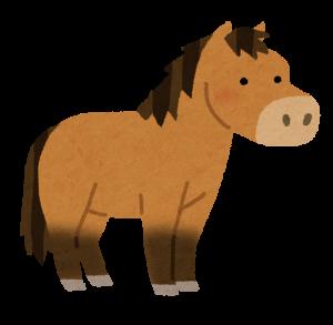 コードバンは馬革素材
